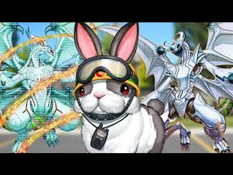 Yugioh Dino Rabbit Deck Yugioh Dino Rabbit Deck