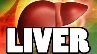 Important Liver Values Albumin, ALT, ALP & AST