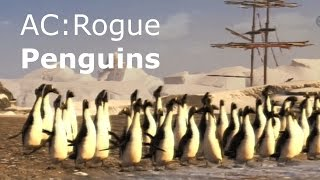 Penguins in Assassin's Creed Rogue (Great Auk)