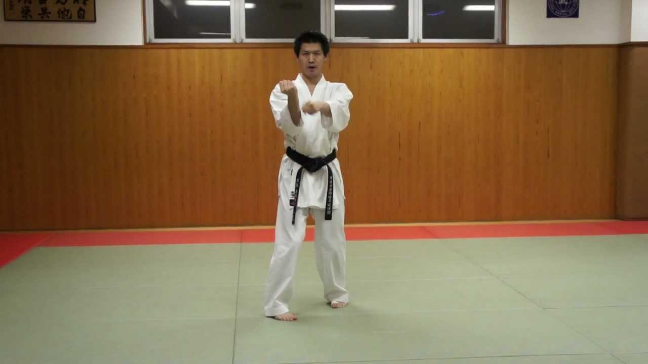 Karate Purple Belt Kata