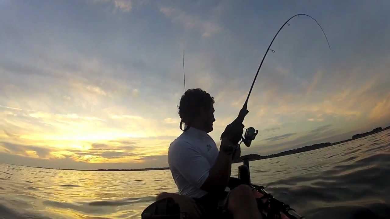 Définir les pêches est abîmée