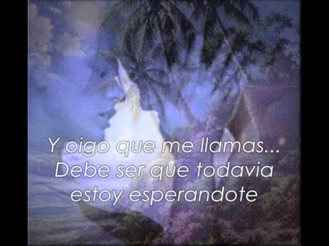 Adele-Set Fire To The Rain (Traducida al Español)