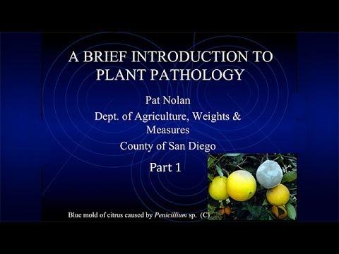 Session 6  Plant Pathology 1