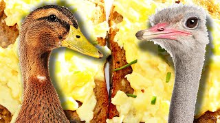Which Egg Makes The Best Scrambled Eggs?