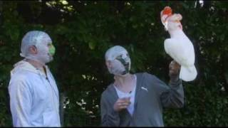 The Rubberbandits Guide to Birds