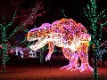 River of Lights- ABQ Biopark- Albuquerque NM 2018