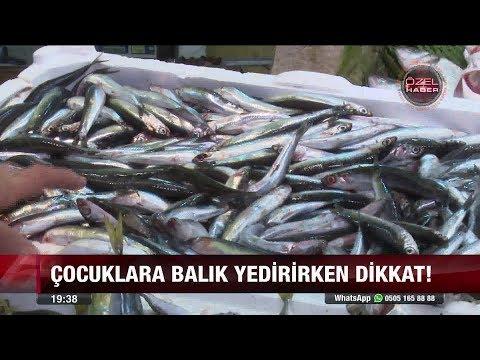 Balıkta ağır metal tehlikesi! - 26 Ekim 2017