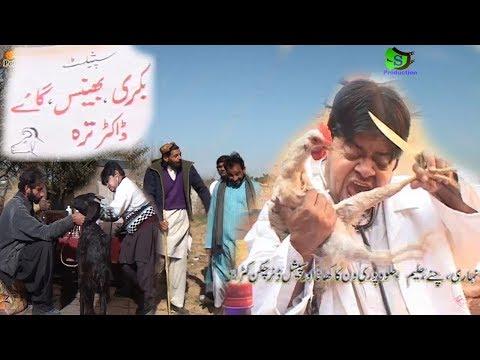 Pothwari Drama 2018 -Comedy Video-Shahzada Ghaffar-Yasir Mehmood new