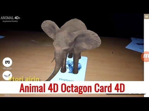 Animal 4D Octagon Studio Flash Card 4D Exclusive video Mengenal Binatang Tori Airin