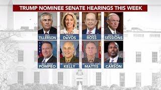Staffers vetting Trump Cabinet picks say they