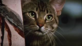 Stephen King's Cat's Eye - Original Theatrical Trailer
