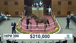 Midlantic Fall Yearlings (2018): Hip 399 f. Into Mischief sells for $210K