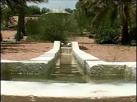 ОАЭ Часть 1 арабский феномен