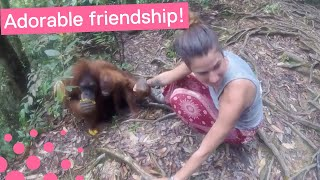 ORANGUTAN GRABS HOLD OF GIRL AND WON'T LET GO