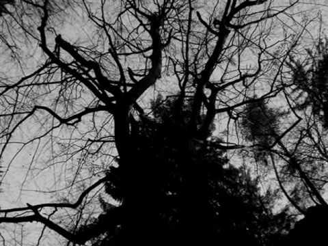Graveworm - Aeons Of Desolation