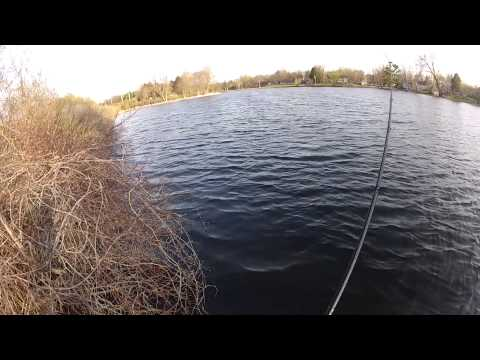 Spring Bass Fishing With Jigs - On Shore