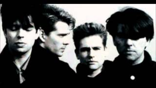 Watch Echo & The Bunnymen Ripeness video