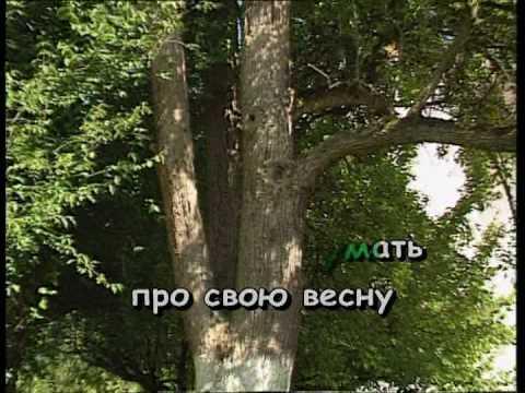 ОДНА КАЛИНА — караоке Українська народна пісня Ukrainian folk song karaoke