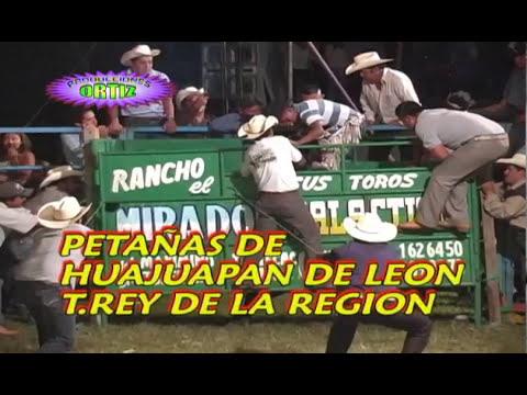 El Toro Campeon