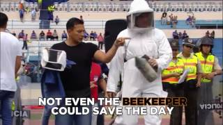 Match abandoned due to swarm of bees