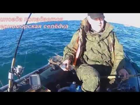 донузлав рыбная ловля  держи карпа
