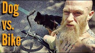 DOG vs. BIKE - How to Ride a Bike with a Dog
