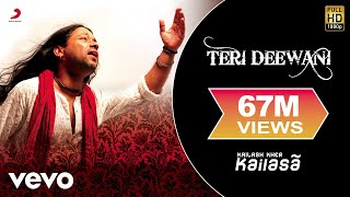 Watch Kailash Kher Teri Deewani video