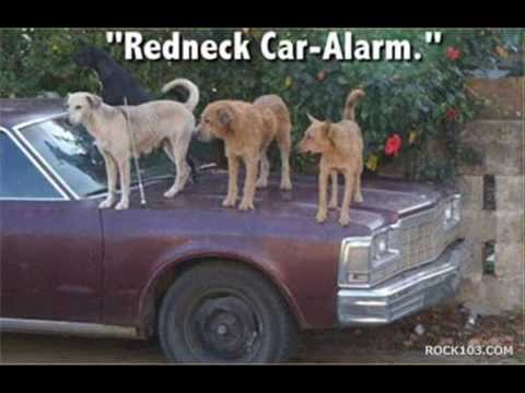 Redneck Pride