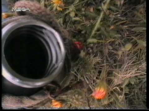 2002GR_ΔΕΝ ΜΠΟΡΕΙ+ΕΙΠΕΣ ΠΩΣ_VIDEO CLIP