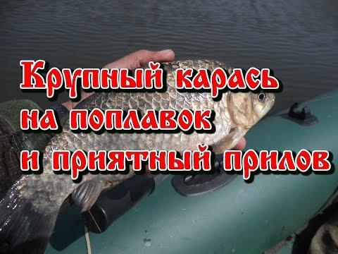 рыбалка весной на карася маховой удочкой карася i