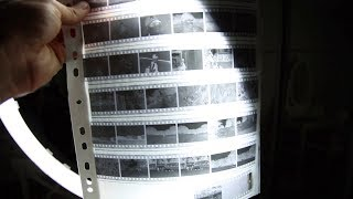 Learn to Develop Film at Home