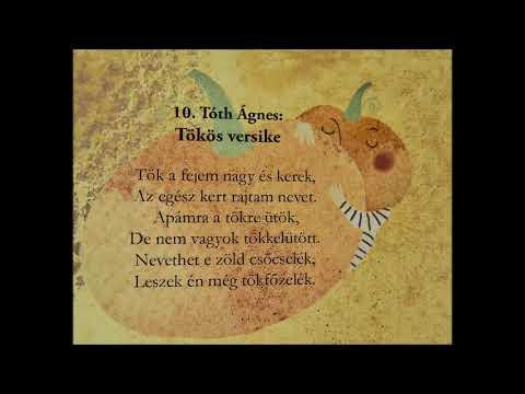 Lyra együttes -Tóth Ágnes: Tökös versike