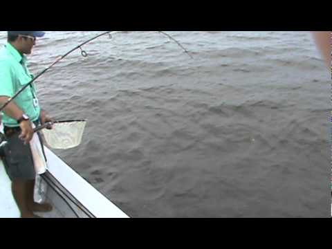 Louisiana Fishing Charter - Catch that Fish!