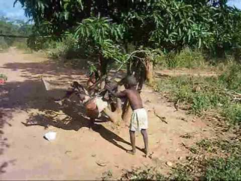 0904 Village life in Zambia