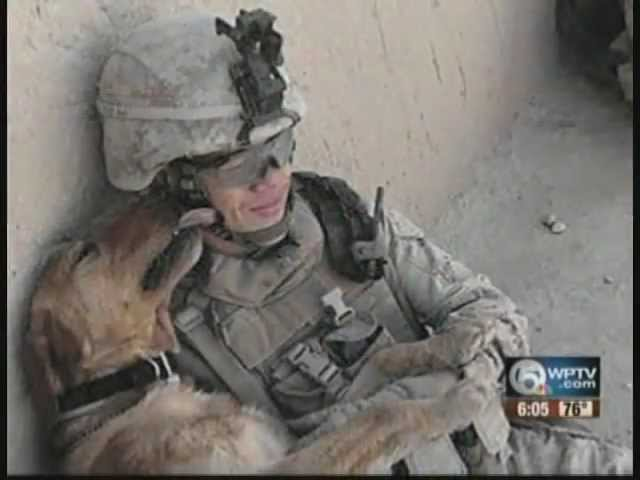 American Dog Rescue and Nowzad Reunite Soldiers and Dogs of War