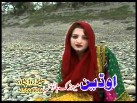 Shinwari Lawangeena video