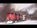 BC Rail Cowl! CN Train 406 West at Salisbury, NB (Feb 15, 2017)