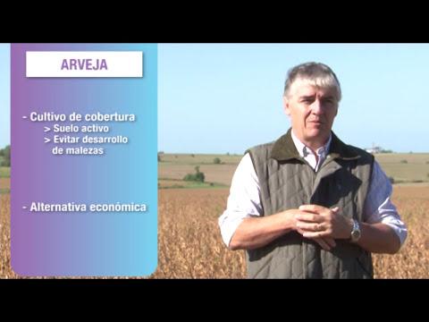 3ra Capacitación 2014 | Descripción ambiental y rotación del cultivos