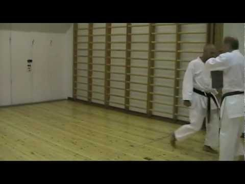 One of the fastest oi zuki / tsuki on pad in YouTube (Lunge punch with power)  空手 shukokai karate Image 1