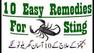 10 Easy Remedies for Scorpion Bite I Scorpion Sting Instant Treatment