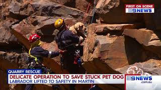Quarry Rescue | 9 News Perth