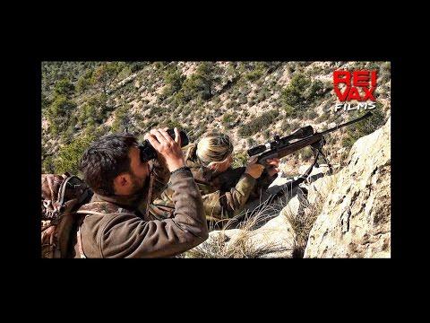 CAZA DEL ARRUI - Www.reivaxfilms.com