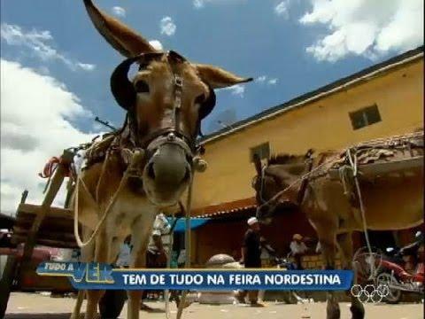 Tudo a Ver 20/07/2012: Conhe�a a feira de �guas Belas (PE), uma das mais tradicionais do Nordeste