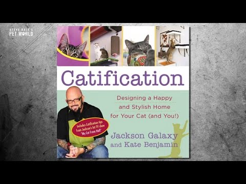 Thumbnail image for 'Catification Saves Cats Lives, Jackson Galaxy '