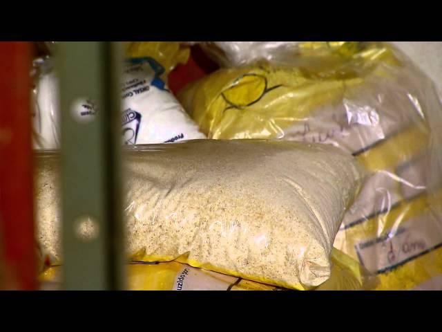 Produtos da agricultura familiar garantem alimentação saudável para estudantes