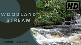 Waterfall & Forest Sounds-Relaxing Sound of Nature-Soothing Birds Singing Relaxation