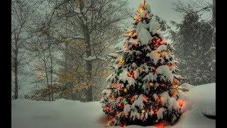 Новогодние приключения Деда Мороза и Снегурочки на Украине.