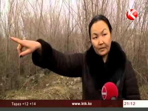 В Павлодарской области восьмиклассницу Настю Шарипову нашли убитой