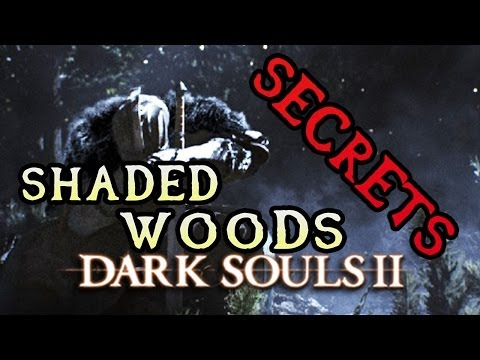 Dark Souls 2 Secrets: SHADED WOODS!