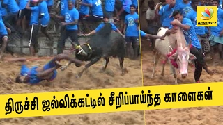 Jallikattu held in Trichy village, nine injured